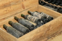 7 Facts about Wine Bottles to Mull Over